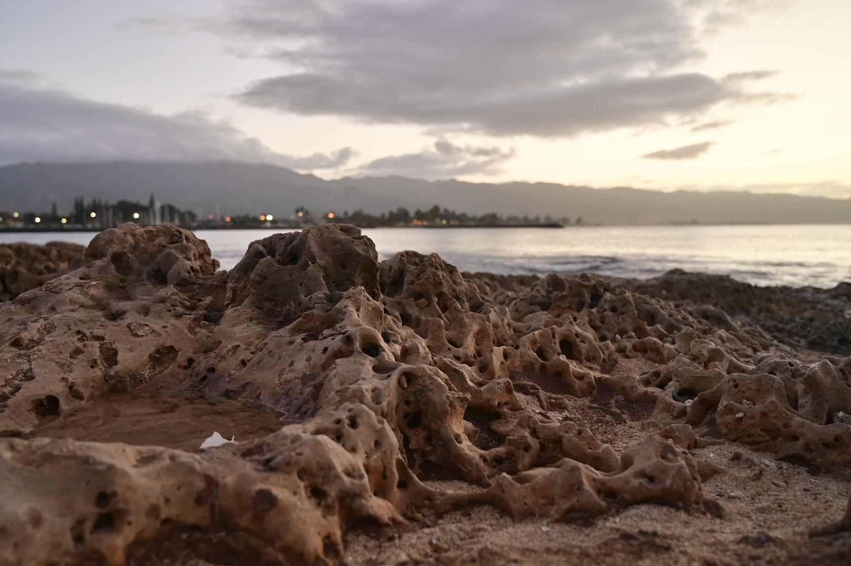 ノースショアの岩礁
